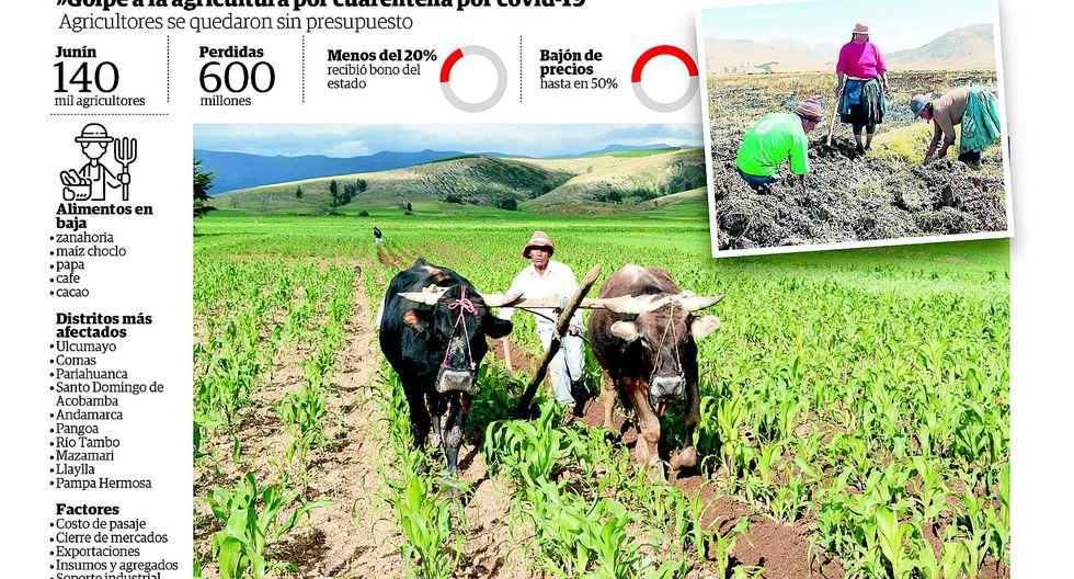 Productores de diez distritos agr�colas de la regi�n Jun�n son afectados por covid-19