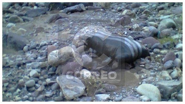Hallan cadáver de mujer en costal cerca de riachuelo