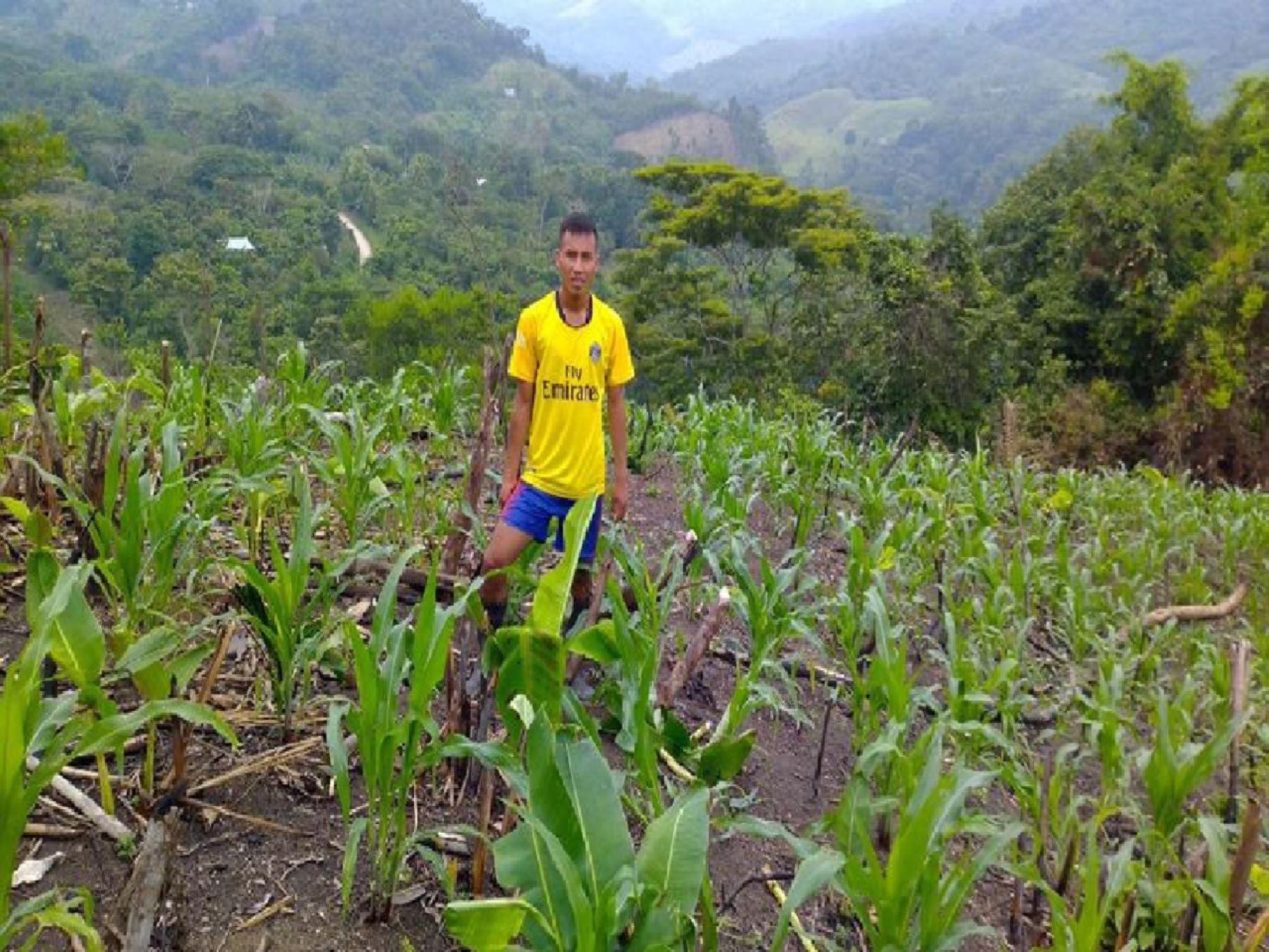 Fondo AgroPer� otorga cr�ditos a peque�os productores con tasas de 3.5%