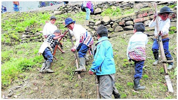 Con chaquitaclla en mano niños siembran hortalizas para complementar sus desayunos