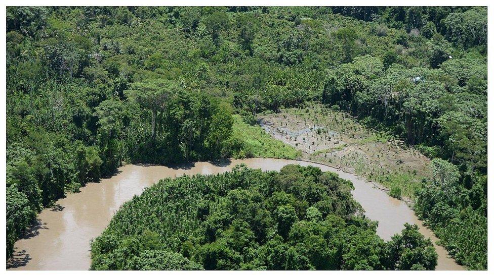 Desborde de río afecta 500 hectáreas de cacao en la Cuenca del Ene