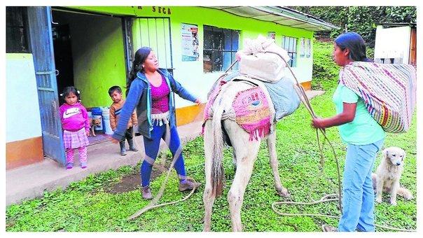 ?Padres de familia llevan alimentos a la escuela de sus hijos en burros