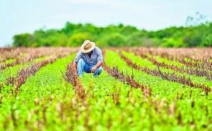 Casi 10 millones de peruanos en peligro por fuertes lluvias previstas entre febrero y abril