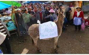 Comerciantes llevan burro para sacar a alcalde de municipalidad