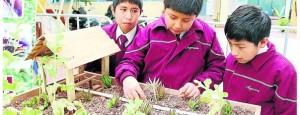 Huancayo: ?Estudiantes crean sistema para protección de cultivos contra heladas